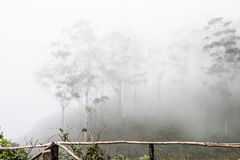 Fogs on Western Ghat Hills Royalty Free Stock Image