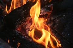 fogueira foto de stock