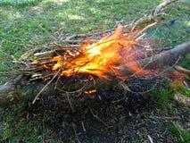 Fogueira alaranjada brilhante dos ramos secos em um prado Fotos de Stock Royalty Free