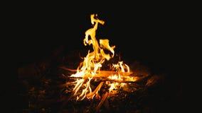 Fogueira ardente com madeira imagens de stock royalty free