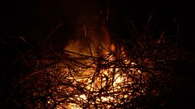 Fogueira de queimadura em um fundo preto cercado por ramos Fim acima filme