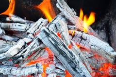 Fogueira, fogo, carvão de madeira e cinza Fotografia de Stock Royalty Free