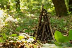 Fogueira na floresta Foto de Stock