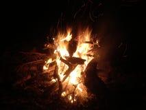Fogueira na floresta da noite imagem de stock