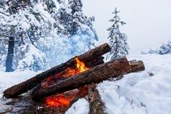 Fogueira na floresta do inverno imagem de stock royalty free