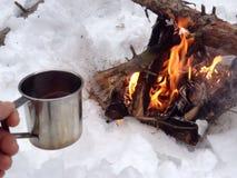 Fogueira na floresta do inverno Fotografia de Stock