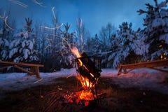 A fogueira na floresta do inverno ilumina a neve imagem de stock