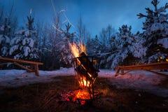 A fogueira na floresta do inverno ilumina a neve fotografia de stock