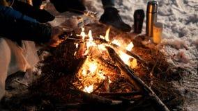 Fogueira na noite da floresta do inverno Fritando o marshmallow filme