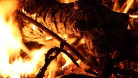 Fogueira - o fogo, chamas ardentes fecha-se acima vídeos de arquivo