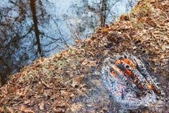 Fogueira pela água na floresta imagens de stock