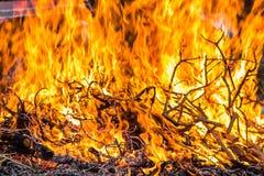 A fogueira queima os ramos próximos acima fotos de stock