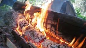 A fogueira queima-se no acampamento entre uma barraca e entra-se Forest Slow Motion filme