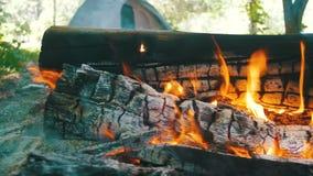 A fogueira queima-se no acampamento entre uma barraca e entra-se Forest Slow Motion vídeos de arquivo