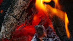 Fogueira quente de carvão video estoque