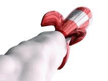 Foguete vermelho (vista traseira) Foto de Stock Royalty Free