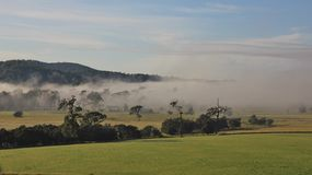 Fogy autumn morning in rural Australia Royalty Free Stock Photography