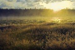 Fogy jeziora wschód słońca Obraz Stock