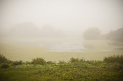Fogy lake landscape Royalty Free Stock Photos