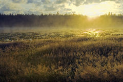Fogy Lake Sunrise Stock Image