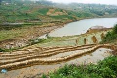 Fogy-Landschaft von Ricefields in Laochai-sapa valey in Vietnam Sapa, Vietnam - 22 mai 2019 lizenzfreies stockbild