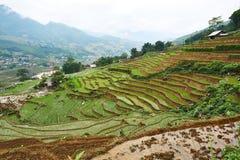 Fogy-Landschaft von Ricefields in Laochai-sapa valey in Vietnam Sapa, Vietnam - 22 mai 2019 lizenzfreie stockbilder