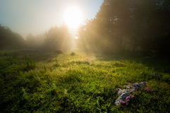 Fogy. Morning in Kardzhali, Bulgaria Stock Photography