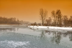 Fogy river winter forest with reflection Stock Photo