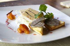 Foie gras with black truffle. Two slices of fois gras with toasted bread anche black truffle with dry apricots Stock Images