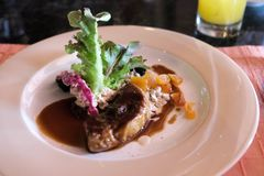 Foie gras med sås royaltyfri foto