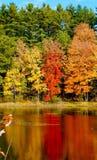 Foilage luminoso di caduta riflesso in un lago Fotografie Stock Libere da Diritti