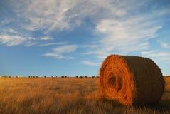 Foin à l'horizon Photo libre de droits