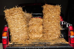 Foin dans le camion Photographie stock libre de droits