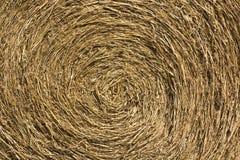 Foin de roulis Photographie stock libre de droits