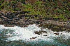 Foka relaksuje na skałach w Hawaii Kauai obraz stock