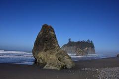 Foki skała Zdjęcie Stock