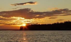 Foki zatoczka Fotografia Royalty Free