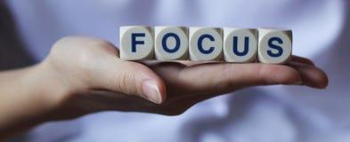 fokus Arkivbilder