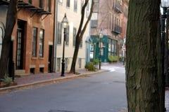 Fokus auf Baumleuchtfeuerhügelnachbarschaft Lizenzfreies Stockbild