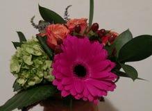 Fokus auf der ersten Blume Stockfoto