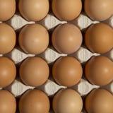 Fokus auf ersten zwei Eiern Lizenzfreies Stockbild