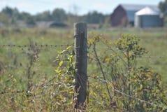 Fokus på taggtrådstaketet Royaltyfria Foton