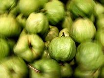 Fokuserad guava i en hög Arkivbild