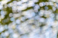 Fokuserad/suddig bild för De av ljus Suddighet lampor Ljus bokeh Arkivfoto