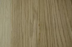 Fokussierte Beschaffenheit irgendeines Stück Holzes stockfoto
