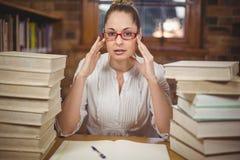 Fokussierter blonder Lehrer, der zwischen Büchern in der Bibliothek sitzt Stockbilder