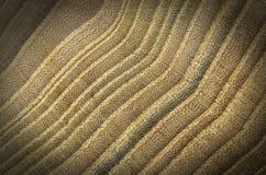 Fokussierter Detailabschluß oben der hölzernen Struktur der Natur mit Vignette Stockfoto