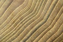Fokussierter Detailabschluß oben der Naturholzstruktur stockfotografie