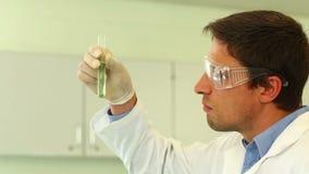 Fokussiertes Untersuchungsreagenzglas des Wissenschaftsstudenten stock footage