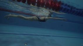 Folâtre la brasse de flottement de nageuse de femme dans la vue sous-marine de waterpool clips vidéos